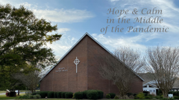 March 22, 2020 Hope & Calm Message