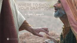 November 22, 2020 Where To Show Your Gratitude