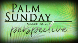 Palm Sunday, March 28, 2021 Perspective